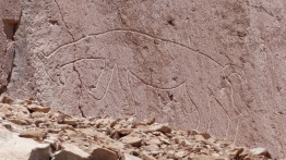 20170315_Atacama_092