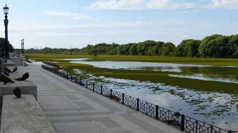 La Laguna de los patos (mare aux canards!)